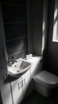 black tiled bathroom with white sink and toilet